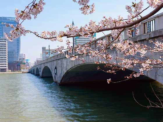 トレドの周辺環境(萬代橋)