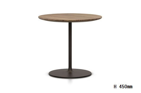 Occasional Low Table