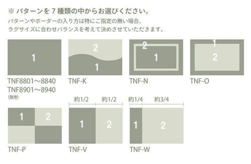 tnf8801sub2